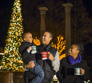 Christmas Town - Busch Gardens Williamsburg Vacation Package package information