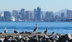 See the San Diego Sights! package information