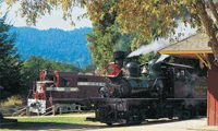 Roaring Redwood Railroad Adventure package information