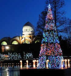 Cincinnati Zoo: PNC Festival of Lights Package package information